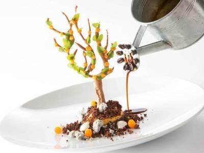 3-Komponenten-Dessert: Mohn – Marillenbaum mit Kaffee